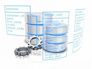 Databaset